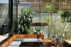 Secluded from neighbours, the pond lounge provides a place to commune with nature.