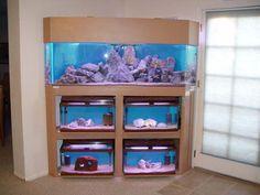 Unique 30 Gallon Fish Tank Stand Walmart