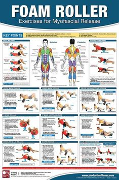 Foam Roller Exercises for Myofascial Release Fitness Gym Physiotherapy Wall Chart . - Foam Roller Exercises for Myofascial Release Fitness Gym Physiotherapy Wall Map Poster – PFP – - Fitness Gym, Physical Fitness, Fitness Memes, Fitness Motivation, Fitness Logo, Fitness Equipment, Fitness Style, Fitness Hacks, Fitness Nutrition