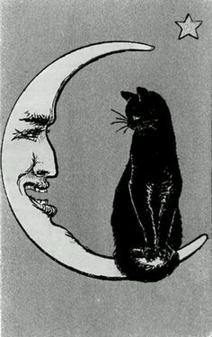 I like this, Make the cat a bit fatter and a tuxedo and I have my Meatball tattoo!