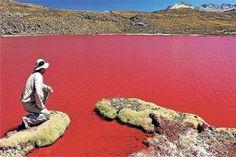 En la localidad de Camiña, en el norte de Chile, a 147 km de la ciudad de  Iquique y a más de 4.000 metros de altura sobre el nivel del mar, se encuentra una extraña laguna roja  http://www.lmneuquen.com.ar