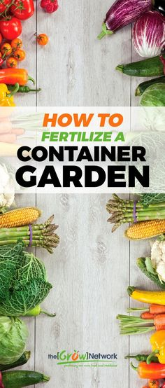 How to fertilize a container garden | Gardening, Urban gardening, Sustainable living, Permaculture, Homesteading, Compost, Natural health, Survival, Off-grid, Prepping #growyourowngroceries #homegrownfoodoneverytable