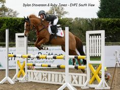 Dylan Stevenson and his 148 Ride Ruby Jones Flying high at the English Home Pony international at South View