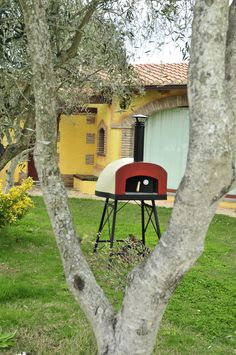 Ideal during the good time of Spring! Cook healthy deliciuos pizzas in your gardenor balcony!