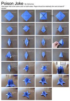 carambola flower origami diagram racing ignition switch panel wiring 63 best images diy how to make crafts poison joke by cahoonas deviantart com box flowers oragami