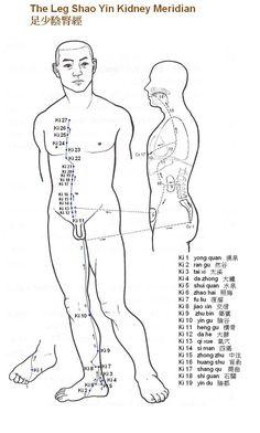 Leg Shao Yin Kidney Meridian