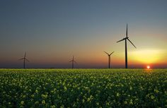 9 CLEAN ENERGY INFOGRAPHICS THAT PROVE SOLAR & WIND ARE THE FUTURE