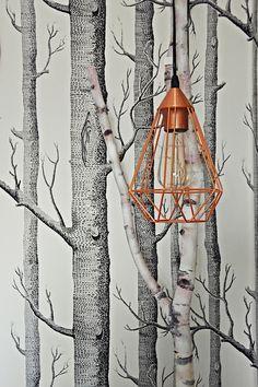 Amazing DIY Lampe aus einem Birkenast Teenager M dchen Zimmer teen room makeover luziapimpinella