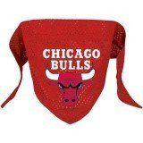 Chicago Bulls Dog Bandana