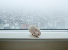 Alec Soth - Lost in Translation for The New York Times