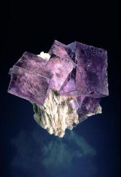 Fluorite, 5 cm edges. Jeff Scovil photo (Author: jrg) / Mineral Friends <3