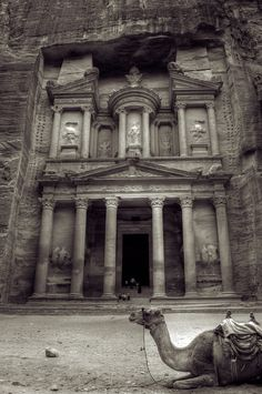 Petra is a site in the Arabah, Jordan. Petra represents the ancient world's heritage culture. It is a beauty hidden behind layers of mountain. Oh The Places You'll Go, Places To Travel, Places To Visit, Seven Wonders, Wonders Of The World, Rome, Beautiful Places, To Go, Around The Worlds