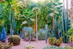 Travelogue: Le Jardin Majorelle | JungalowJungalow
