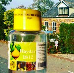 world's best selling cologne the original sicilia lemon International cologne company 1812 haydar