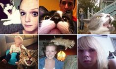 Hilarious images of photobombing cats