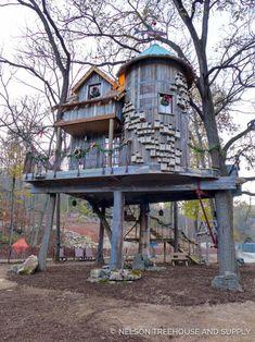 Cool Tree Houses, Bird Houses, Dream Home Design, Tiny House Design, Building A Treehouse, Treehouse Kids, Dogwood Canyon, Black Walnut Tree, Tree House Designs
