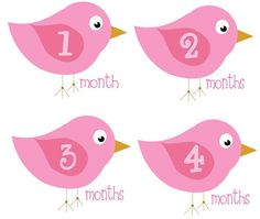 Baby Month Stickers Girl Monthly Onesie by getthepartystarted, $12.00 more baby shower gift ideas at  http://www.etsy.com/shop/getthepartystarted?section_id=6771147