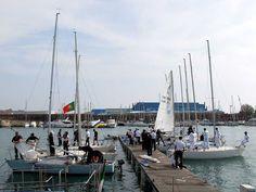 J/24 sailboats, TAN 2011