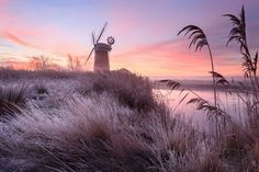 Justin Minns's stunning view of a frosty morning at Horsey, Norfolk, came second in the seasons category for the RHS photographer of the year. White Photography, Street Photography, Landscape Photography, Nature Photography, Bbc News, Jardim Natural, Myriad Botanical Gardens, Norfolk Broads, Award Winning Photography