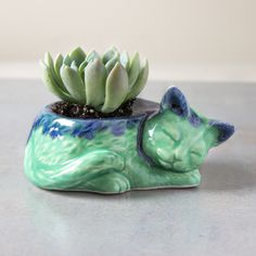Kitty planter, ceramic succulent planter, handmade pottery cactus planter, mint green blue Ceramic plant pot, cat lover gift - READY TO SHIP