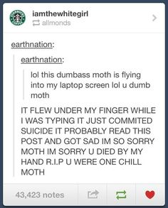 """You were one chill moth…"""