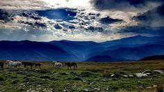 Transalpina- Romania