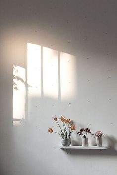 Home Decoration Flowers Simple 65 Ideas Foto Blog, Minimalist Photography, Minimalist Photos, Cecile, Morning Light, My New Room, Light And Shadow, Decoration, Minimalism