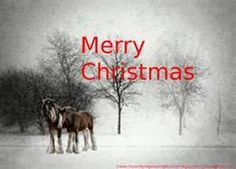 Budweiser Clydesdales In Snow - Bing ImagesBudweiser Clydesdales In Snow