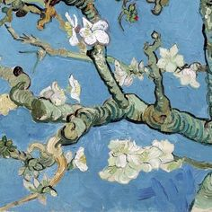 Pierre-Jean Maurel - lonequixote: Almond Blossom (detail) byVincent van Gogh (via. Van Gogh Drawings, Van Gogh Paintings, Art And Illustration, Post Impressionism, Impressionist, Flores Van Gogh, Desenhos Van Gogh, Van Gogh Flowers, Van Gogh Pinturas