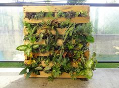 Creative Vertical Planter for Vertical Garden in Pallet Garden House Involving Varieties of Plants Growing at Once