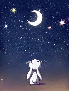 Un mondo di stelle per i vostri sogni <3