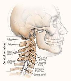 #Nekklachten #Nekpijn. Oorzaken van body stress in de nek. Body Stress Release kan helpen. Zie ook de landelijke website: www.bodystressrelease.nl