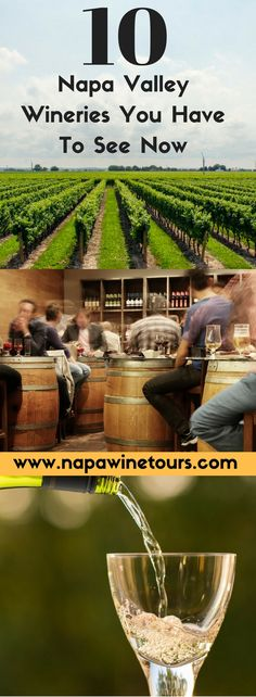 Napa Valley is Known for it's Wine and Beautiful Vineyards but These Top 10 Wineries Will Blow You Away! Find out Why These Are our Top Winery picks!