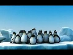 Funny advertisement for Lijn with penguins. Shark rounds up the group of penguins that are on the iceberg. Reading Street 3rd Grade, Penguin Videos, Movie Talk, Polar Animals, Daily Video, Popular Art, Animation, Hai, Killer Whales