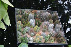 Garden mirrors - loo