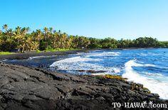 Big island   Punalu'u Black Sand Beach