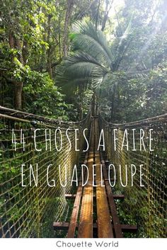 44 issues to do in Guadeloupe Jhope, Namjoon, Places To Travel, Travel Destinations, Marie Galante, French West Indies, Caribbean Vacations, Blog Voyage, Where To Go
