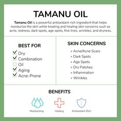 Tamanu Oil has been known to have strong healing qualities while also being antibacterial and anti-inflammatory. Its a strong and potent moisturizing ingredient that contains natural UV absorbing qualities to help protect your skin from free radicals. Oily Skin Care, Skin Care Tips, Skin Nutrition, Tamanu Oil, Vitamins For Skin, Energy Vitamins, Daily Vitamins, Acne Scars, Good Skin