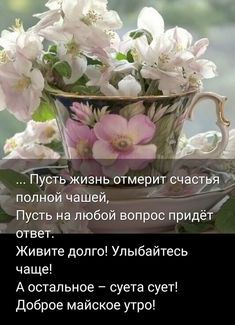 Фотографія Good Morning My Love, Good Morning Coffee, Good Morning Photos, Frozen Birthday Party, Happy Birthday, Flower Phone Wallpaper, Different Quotes, Wise Quotes, Red Roses