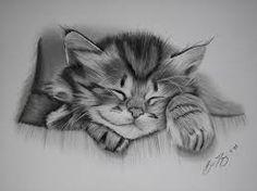 Resultado de imagen para cats drawings pencil