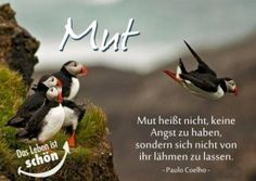 Learn German, Humor, Words, Holiday Decor, Verse, Angst, Depression, Pray, Quotes