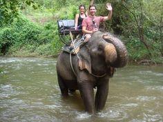 Fotos Tailandia Insolit Viajes. Elefantes