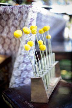 test tubes as bud vases