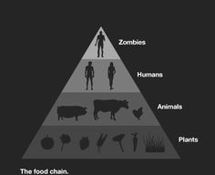 The food chain.