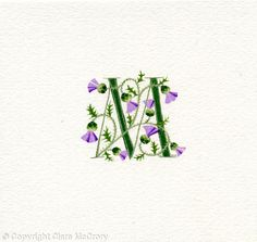 Initial M dark green with thistles - Gouache on watercolour paper