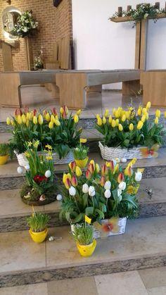 Plants, Altar Decorations, Plant, Planets