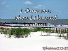 I chose you when I planned creation. Father's Love Letter, Ephesians 1, I Choose You, Fathers, Lettering, How To Plan, Beach, Outdoor, I Chose You