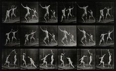 1800s:  Eadweard Muybridge: Animals & Humans in Motion