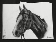 Ready to ride  #charcoal #drawing #art #horse