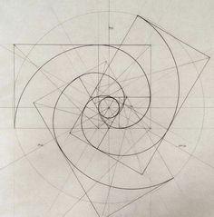 Fibonacci spirals